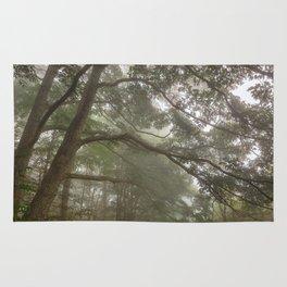 Misty Forest Branchscape Rug