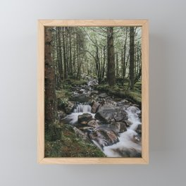 The Fairytale Forest - Landscape and Nature Photography Framed Mini Art Print
