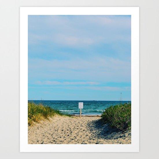 Beach Entrance Art Print