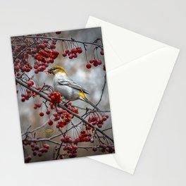 Pine Grosbeak Stationery Cards