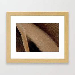 pintail wing feather art pijlstaart vleugel veer Framed Art Print