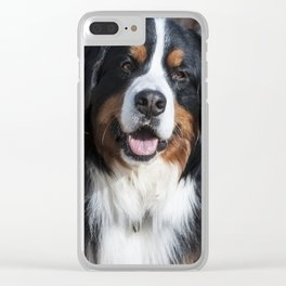 Happy Bernese Mountain Dog Clear iPhone Case