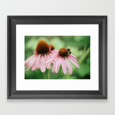 Summer memories Framed Art Print