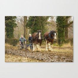 Working Horses 3 Canvas Print