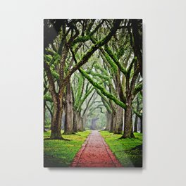 Tree-Lined Metal Print