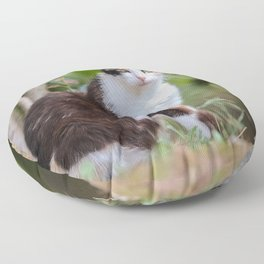 Are you meowing to me? Floor Pillow