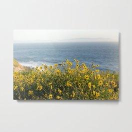 California Summer Metal Print