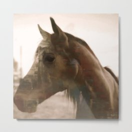 The Painted Quarter Horse Metal Print