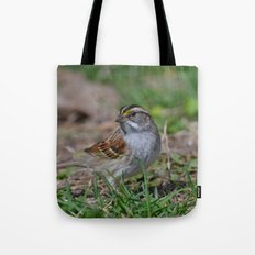 A White Throated Sparrow Tote Bag