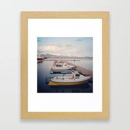 5996 Framed Art Print