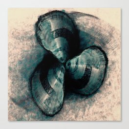 Shells in a row Canvas Print