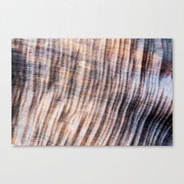 Shar-Pei Driftwood Canvas Print