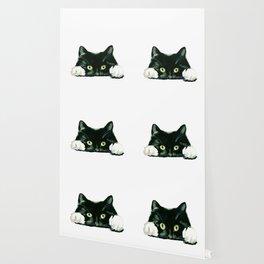 Black cat watching at you Wallpaper