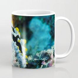 Common nudibranch portrait Coffee Mug