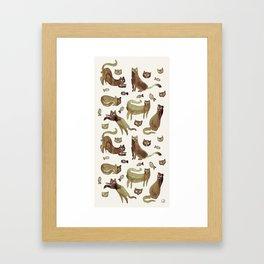 cats cats cats Framed Art Print