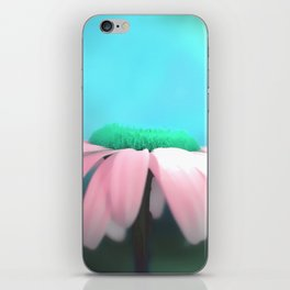 Daisy in pink & blue iPhone Skin