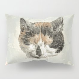Cat napping Pillow Sham