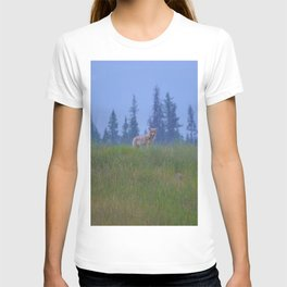 Early morning coyote sighting in Jasper National Park T-shirt