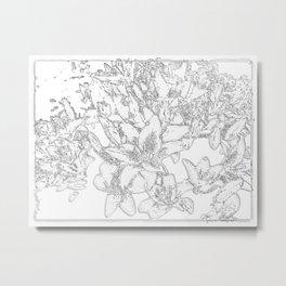 Large flowers pencil effect Metal Print