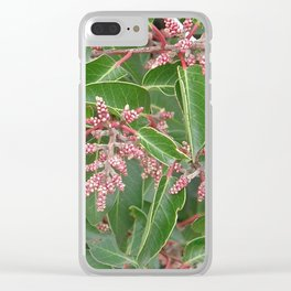 TEXTURES - Manzanita in Drought #1 Clear iPhone Case