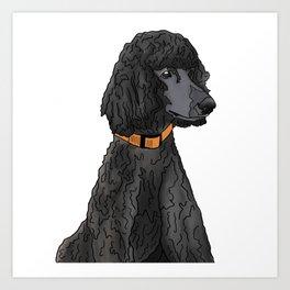 Misza the Black Standard Poodle Art Print