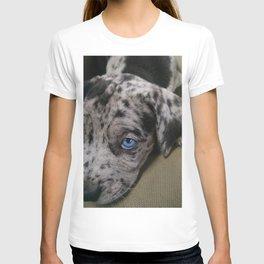 My Dixie Blue T-shirt