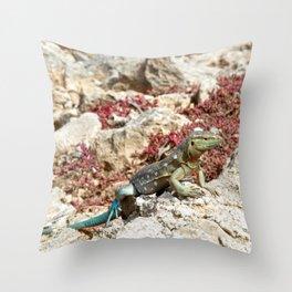 Blue Whiptail Lizard Throw Pillow