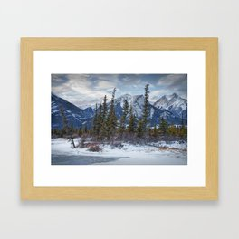 Pines at the edge of a lake in Jasper National Park Framed Art Print