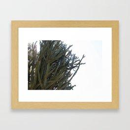 Park Güell Framed Art Print