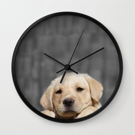 A dog in Bag Wall Clock