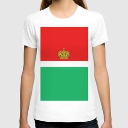 flag of Kaluga T-shirt