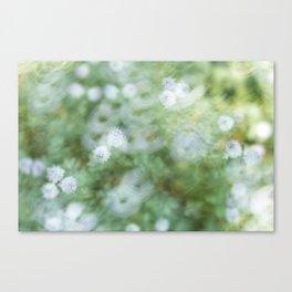Flowers & Swirl Canvas Print