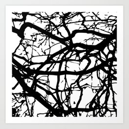 black branches Art Print