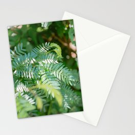 More shades of green | Monteverde Costa Rica botanical nature photography Stationery Cards