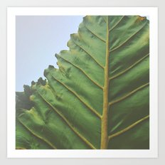 One Big Leaf Art Print