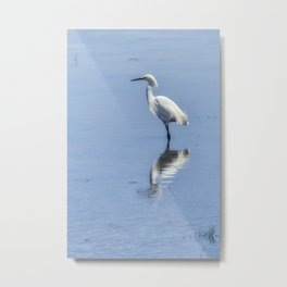 Snowy Egret from Chincoteague No. 2 Metal Print