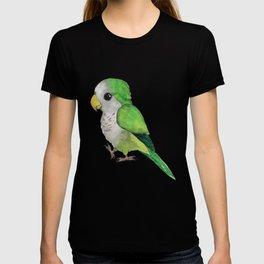 Very cute green parrot T-shirt