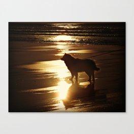 Beach Dog Silhouette  Canvas Print