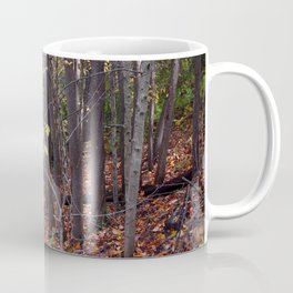 Painted Paradise Coffee Mug