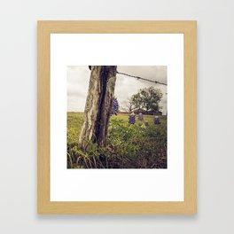 vintage texas bluebonnets I Framed Art Print
