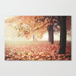 In the Fog Canvas Print