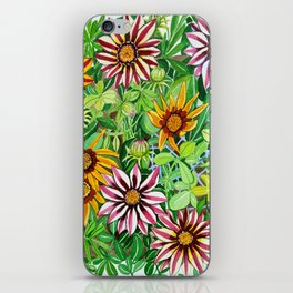 Gazanias iPhone Skin
