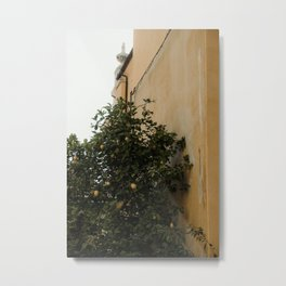 Yellow wall and lemon tree | Architecture in Toscane, Italy| Colorful travel photography Metal Print