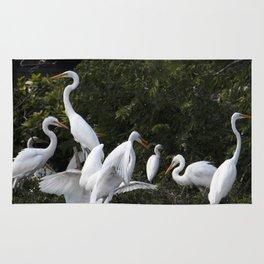 Egret  Flock of Fledglings Rug