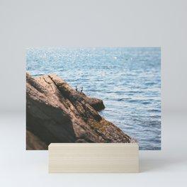 Opposing Views Mini Art Print