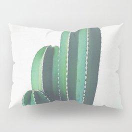 Organ Pipe Cactus Pillow Sham