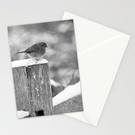 Winter beauty - hello there - Stationery Cards
