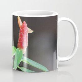 Flor de Jicaro Coffee Mug