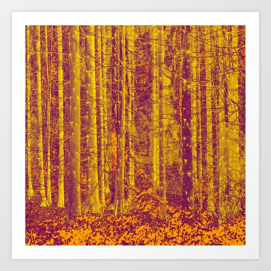 In the middle of the forest Art Print