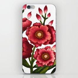 Celosia cristata_Solnekim iPhone Skin